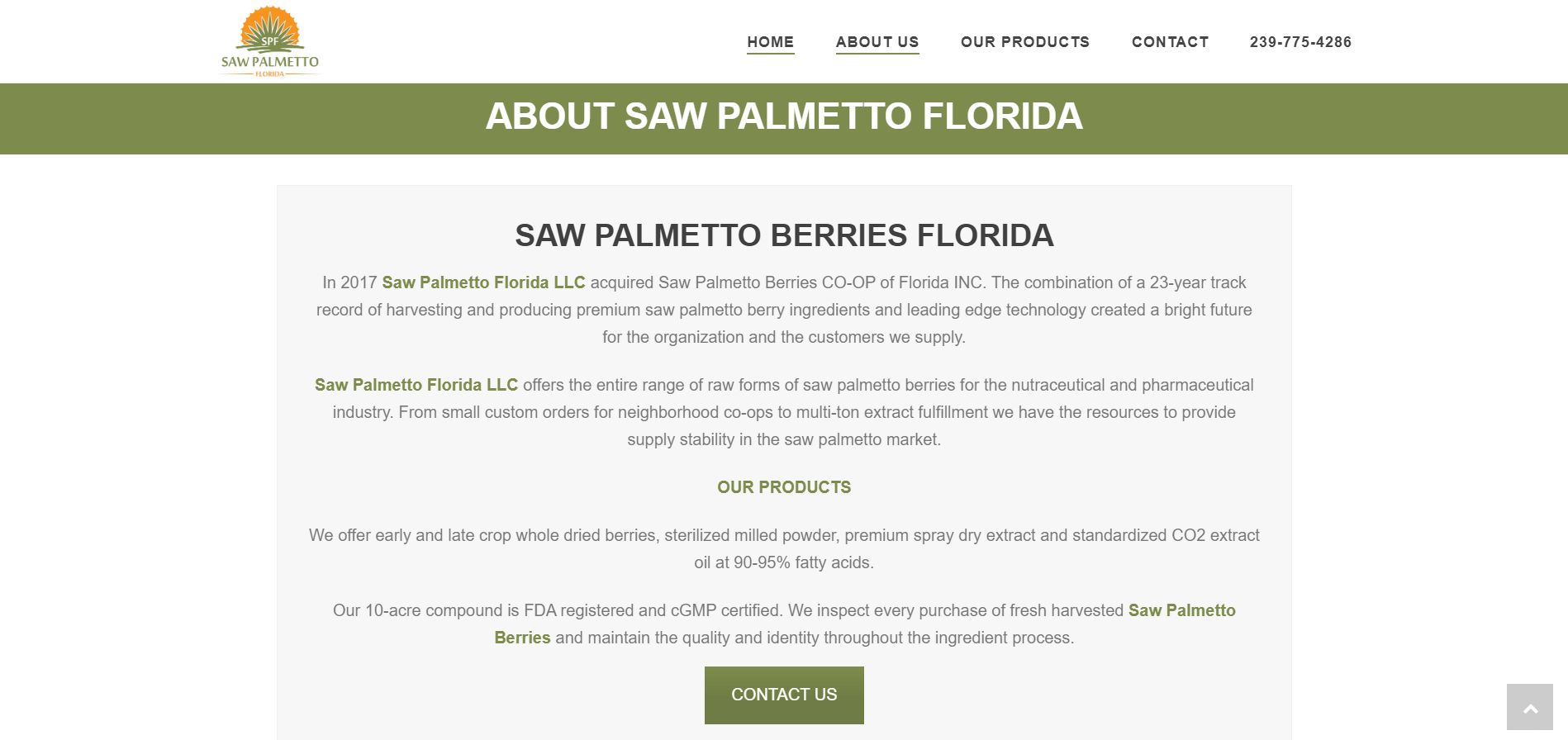 saw palmetto florida about page