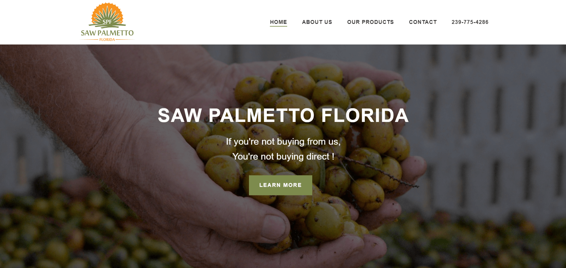 saw palmetto florida splash page